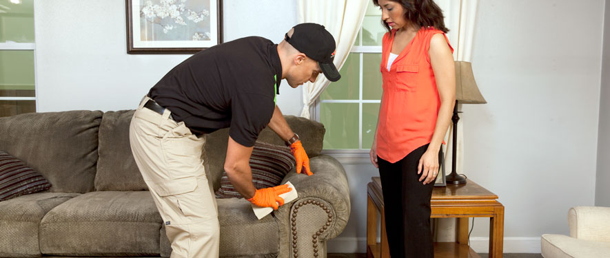 Alexandria, LA carpet upholstery cleaning